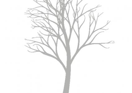 Weddingtree Baum Klassisch